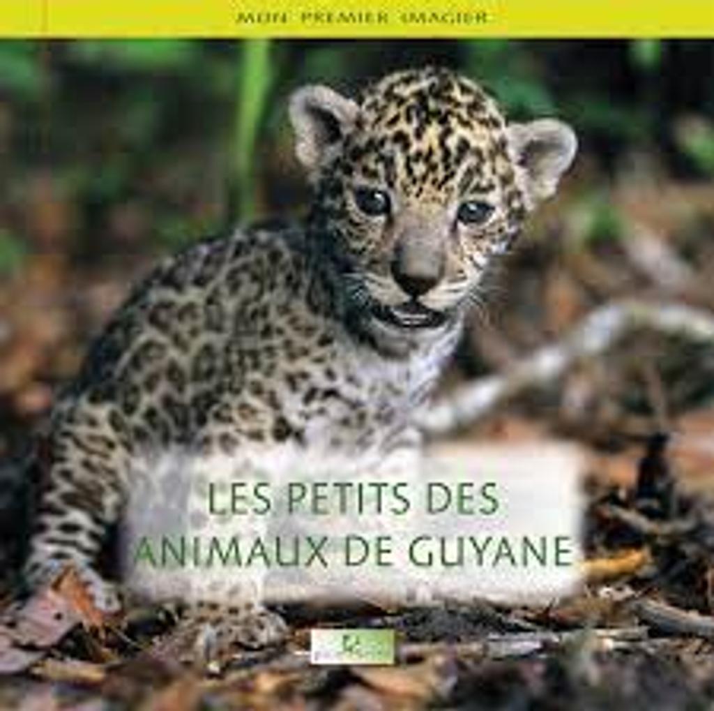 Les Petits des animaux de Guyane / conception et réalisation Thierry Montford |