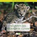 Les Petits des animaux de Guyane / conception et réalisation Thierry Montford | Montford, Thierry (1959-....). Auteur